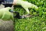 Giardiniere RGE207